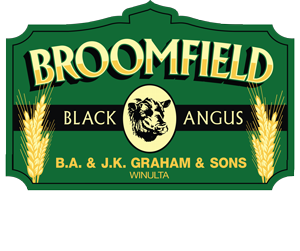 Broomfield Black Angus